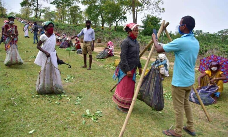 Farmers wearing improvised face masks stand in a queue to maintain social distancing norms, Nagaon, April 21, 2020