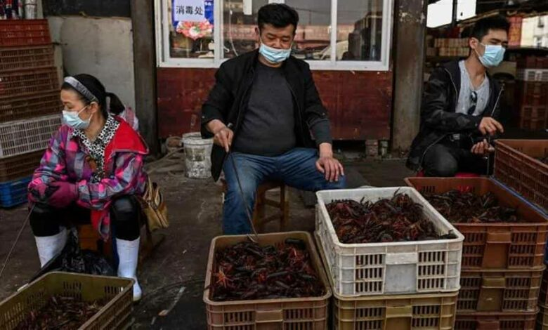 This photo taken on April 15, 2020 shows vendors wearing face masks as they offer prawns for sale at the Wuhan Baishazhou Market in Wuhan in China