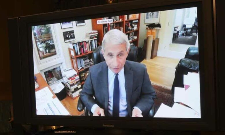 Dr. Anthony Fauci, director of the National Institute of Allergy and Infectious Diseases speaks remotely during a virtual Senate Committee for Health, Education, Labor, and Pensions hearing, Tuesday, May 12, 2020 on Capitol Hill in Washington.