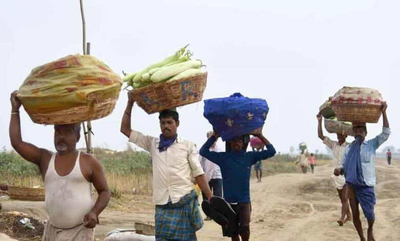 Farmers carry vegetables to sell in the wholesale market, during lockdown against coronavirus in Patna, Bihar.